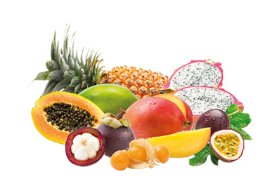 Fruits-Best-obstkorb-exotic